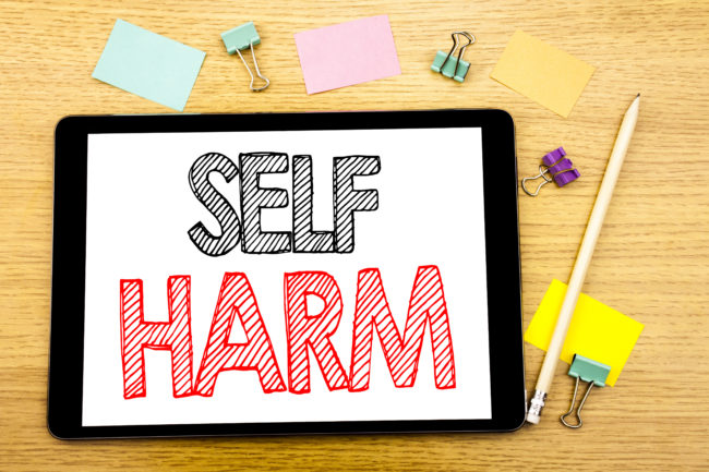 Self Harm Training